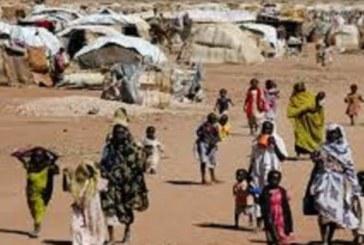 الأمم المتحدة: دارفور لم تشهد حالات نزوح في يناير