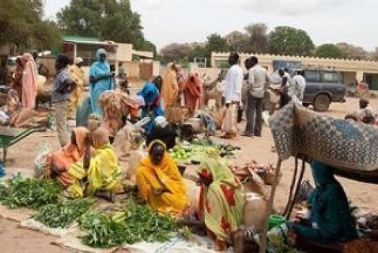 الأوضاع في دارفور ليست كصورتها القديمة….قرارات جمع السلاح بدلت أحوال الناس والمواقف