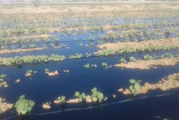 إنفجار الخط الناقل للبترول بولاية نهر النيل والوزارة توضح