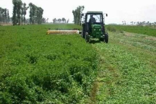 حرق مشاريع زراعية تتبع لرموز نظام البشير